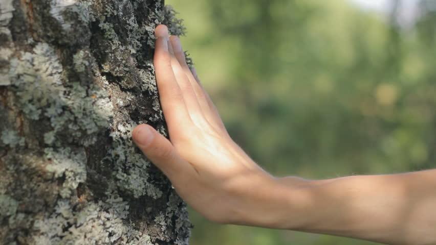 handtree